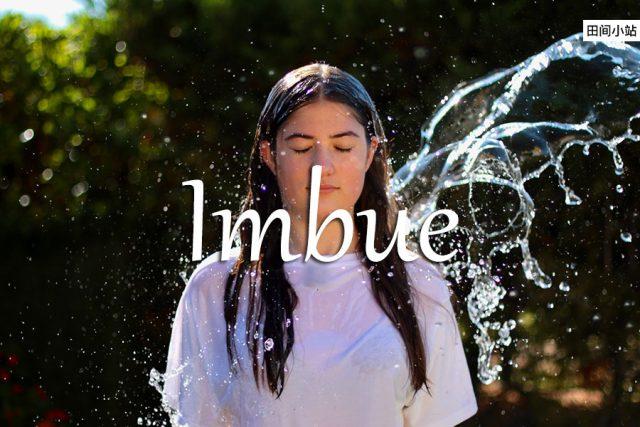 小词详解 | imbue