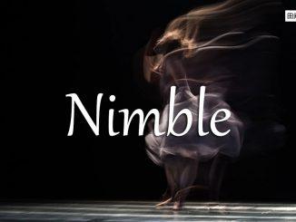 小词详解 | nimble