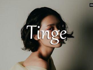 小词详解 | tinge