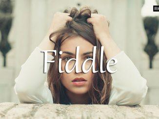 小词详解 | fiddle